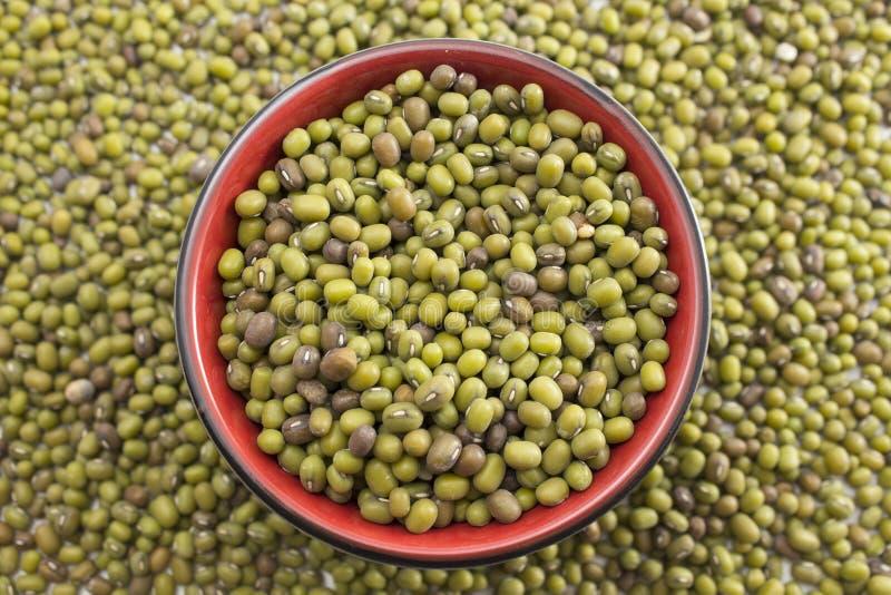 Groene mung bonen in een kom stock foto