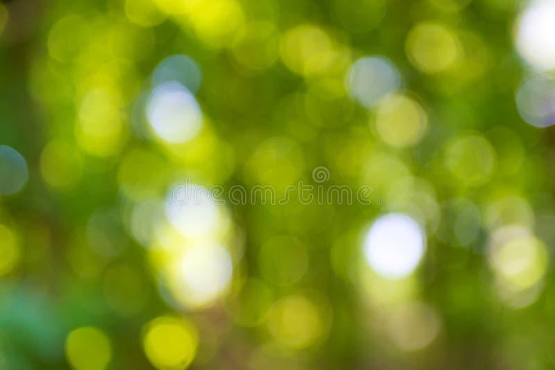 Groene natuurlijke bokeh stock fotografie