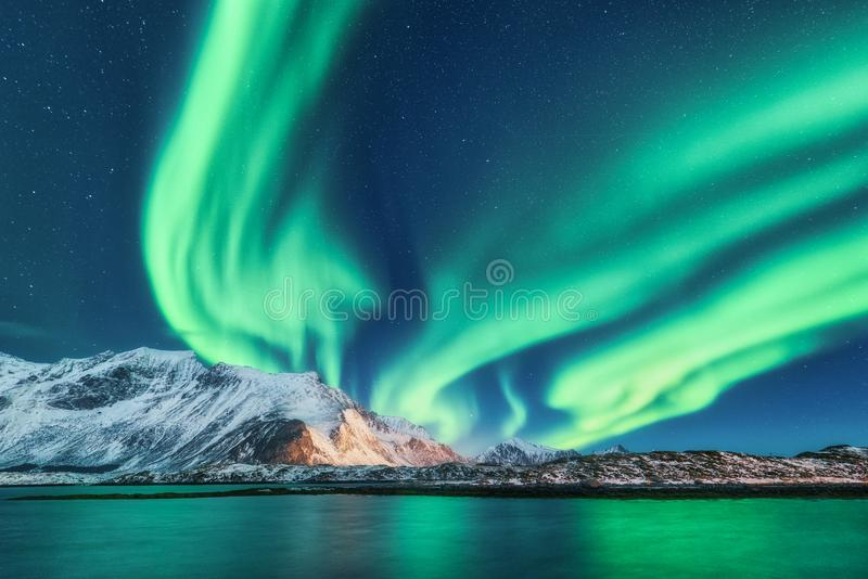 Groene noordelijke lichten in Lofoten-eilanden, Noorwegen Aurora Borealis stock foto's