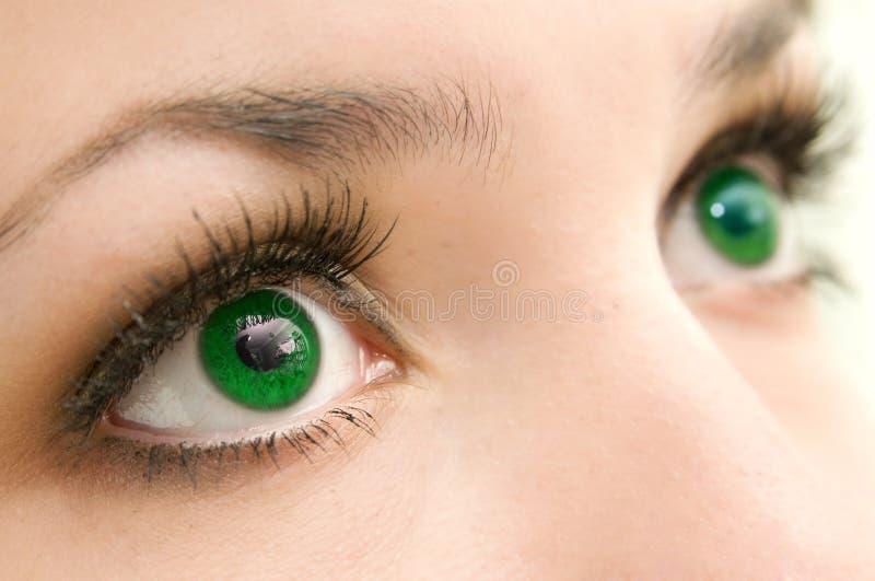 Groene ogen stock afbeelding