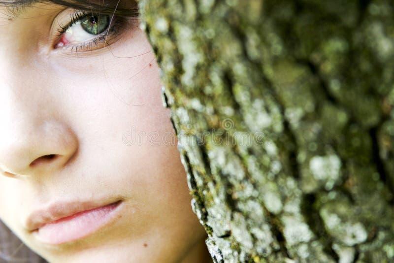 Groene ogen van achter boom stock foto's