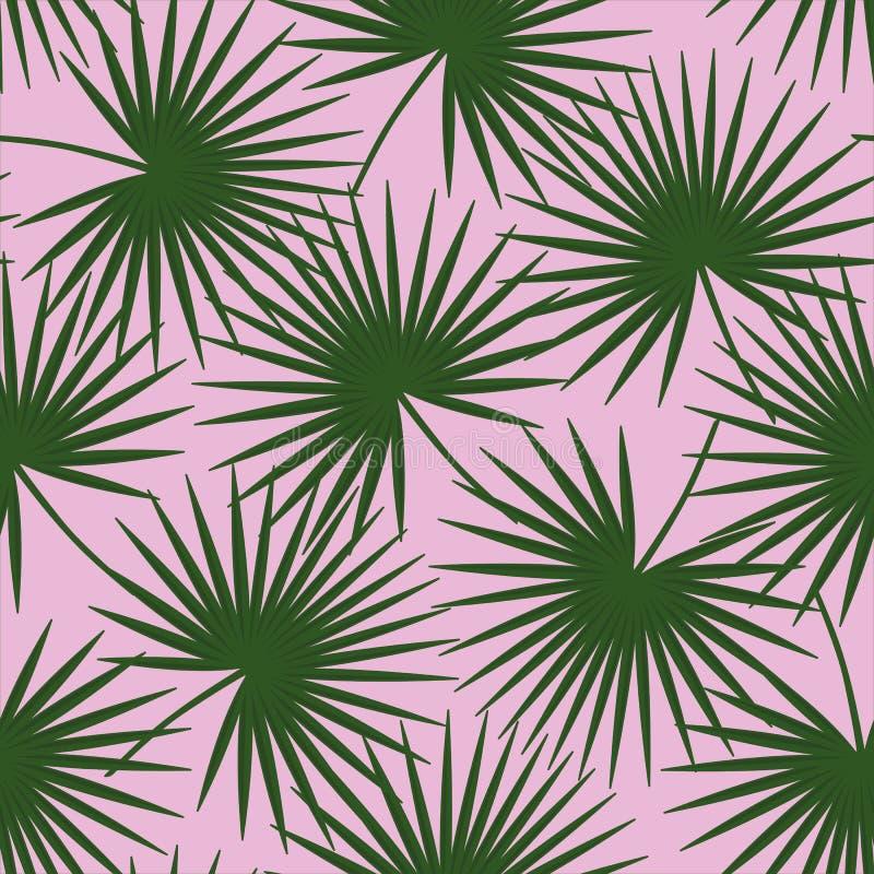 Groene palmbladen op een roze pa van achtergrondlivistonarotundifolia royalty-vrije stock afbeelding