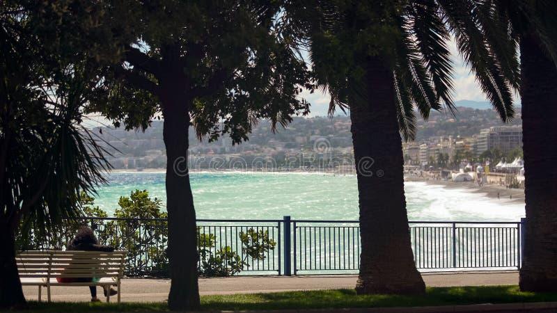 Groene palmen tegen heldere overzees, vrouw die rust op bank, toevluchtstad hebben stock foto