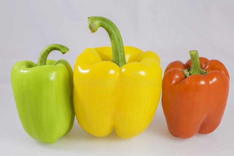 Groene paprika stock fotografie
