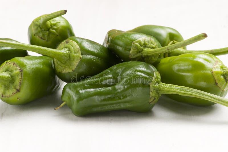 Groene paprika's. stock foto