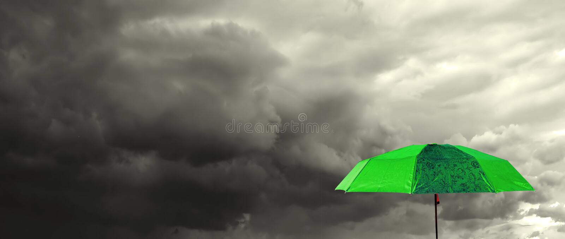 Groene paraplu royalty-vrije stock foto's