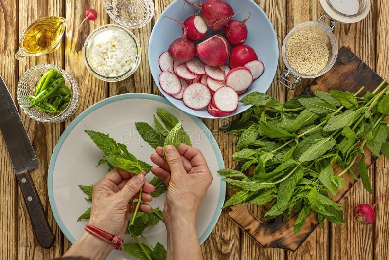 Groene plantaardige, vegetarische organisch, handbesnoeiing, gezond voedsel, verse groenten, plaat, huisvrouw het snijden, natuur royalty-vrije stock foto's