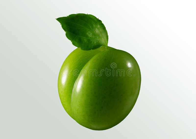 Groene pruim stock foto