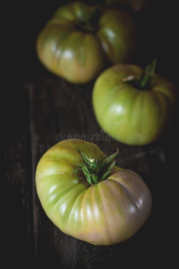 Groene R.A.F.-tomaten stock afbeeldingen