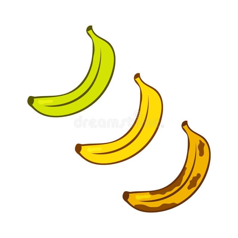 Groene, rijpe gele, oude bruine bananen Van het de kleurenbeeldverhaal van de banaanrijpheid het pictogramreeks geïsoleerde de il stock illustratie