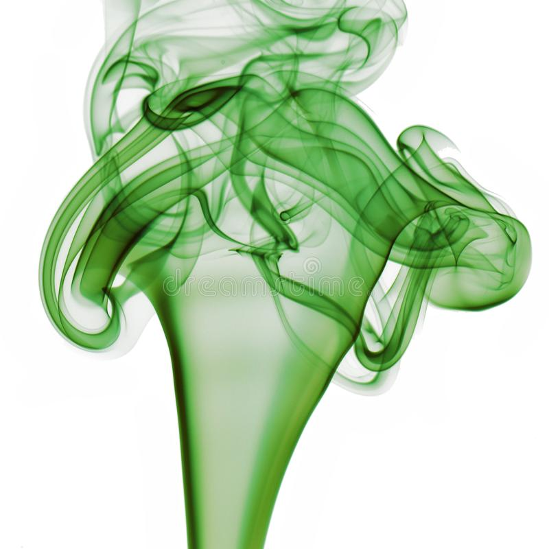 Groene Rook op Witte Achtergrond royalty-vrije stock foto's