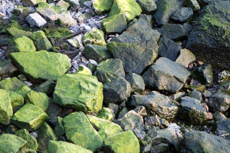 Groene Rotsen stock fotografie
