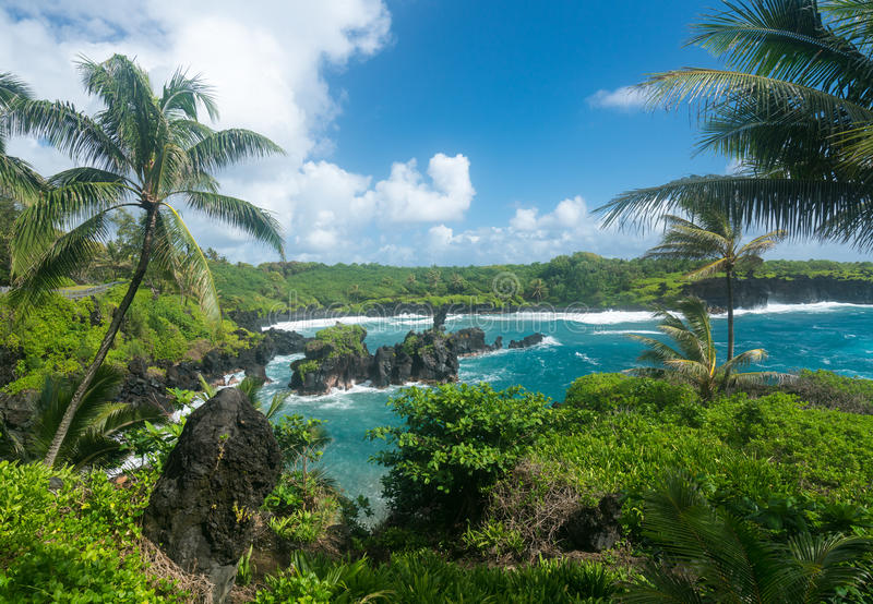Groene rotsen in Waianapanapa op de weg aan Hana in Maui stock foto's