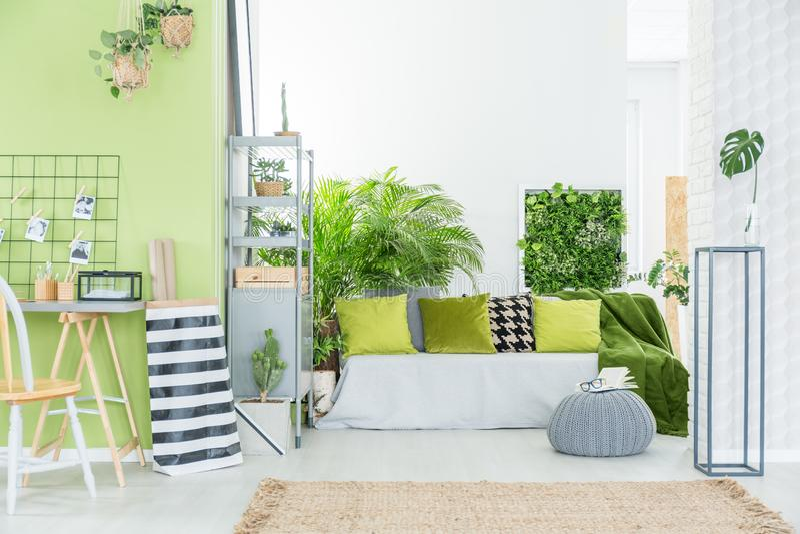 Groene ruimte met groene hoofdkussens stock afbeelding