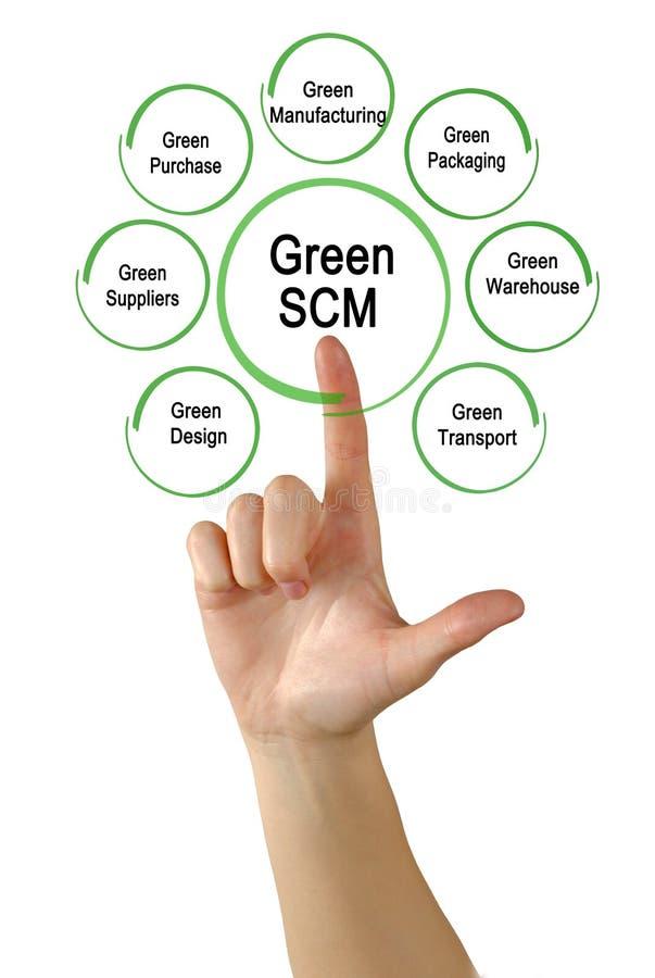Groene SCM-Componenten royalty-vrije stock afbeelding