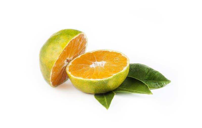 Groene snoepje geïsoleerde mandarin clementinemandarijn op witte achtergrond met blad royalty-vrije stock afbeelding