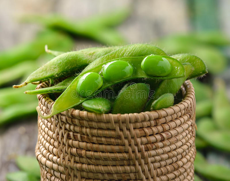 Groene sojabonen in de mand stock foto