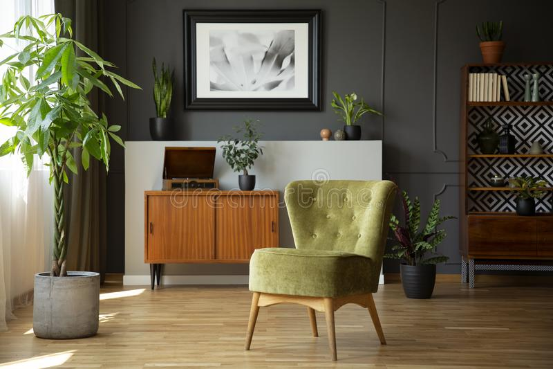 Groene stoel naast installatie in grijs woonkamerbinnenland met affiche boven houten kabinet Echte foto royalty-vrije stock fotografie