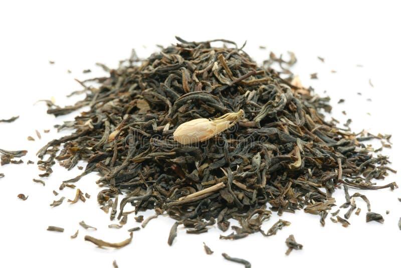 Groene thee. stock afbeelding