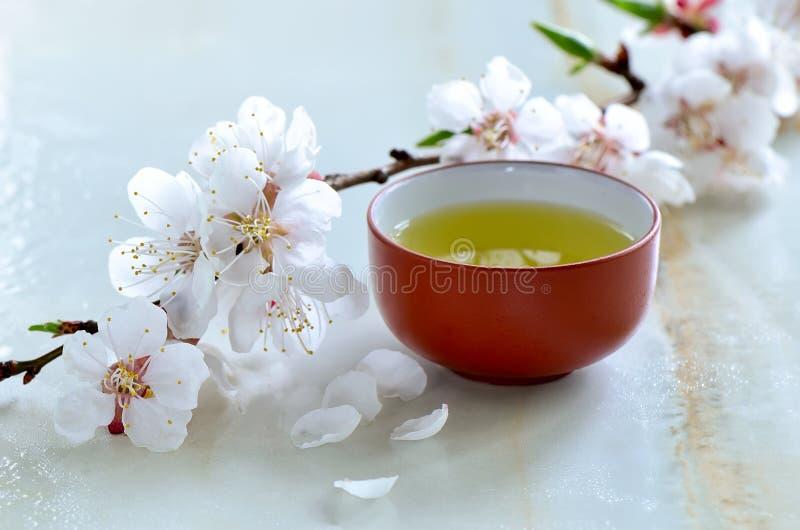 Groene thee in een traditionele kop royalty-vrije stock afbeeldingen