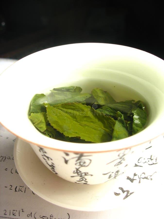 Groene thee in gaiwan stock fotografie