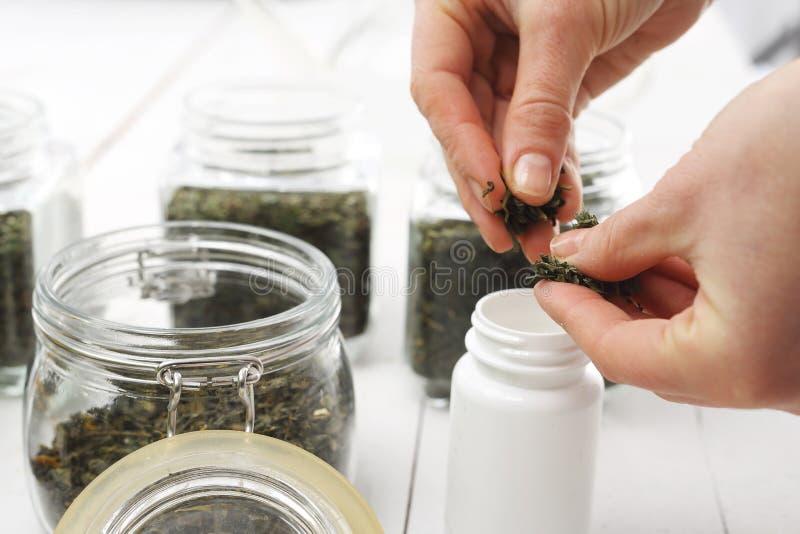 Groene thee in herbalisma royalty-vrije stock afbeelding