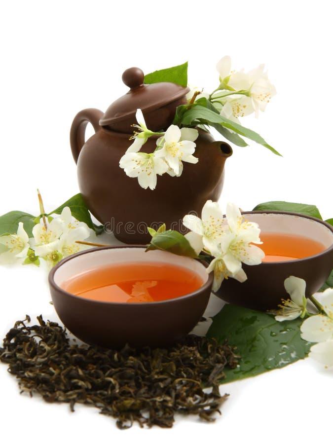 Groene thee met jasmijn royalty-vrije stock foto