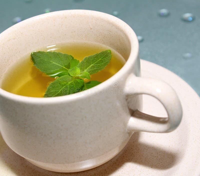 Groene thee met munt stock afbeeldingen