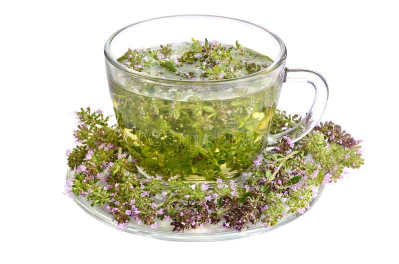Groene thee met thyme royalty-vrije stock foto