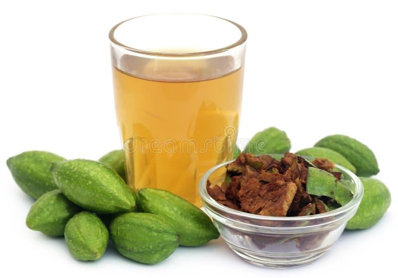 Groene Triphala-vruchten met uittreksel royalty-vrije stock fotografie