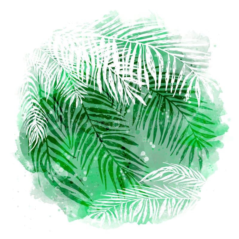 In groene tropische achtergrond, exotische bladeren, kokospalm Vector botanische illustratie, elementen voor ontwerp stock illustratie