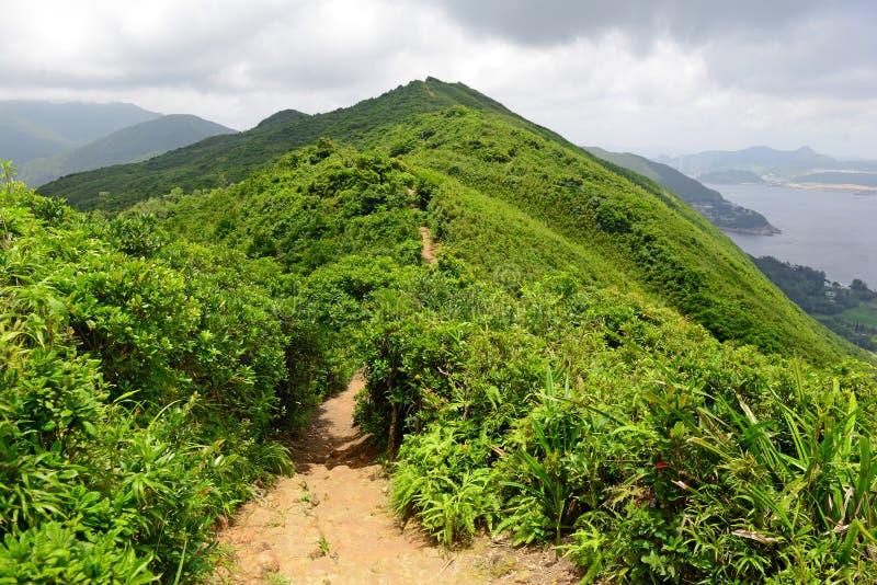 Groene Tropische bergen en wandelingsroute op de Achtersleep van de Draak dichtbij Hong Kong royalty-vrije stock afbeeldingen