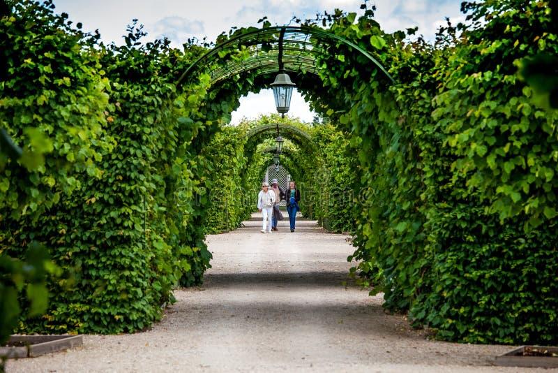 Groene tuinbogen en weg Landschapsarchitectuurontwerp in Rundale-paleis, Letland royalty-vrije stock fotografie