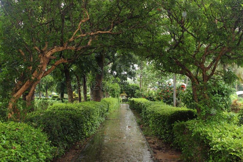 Groene tuinen royalty-vrije stock afbeelding