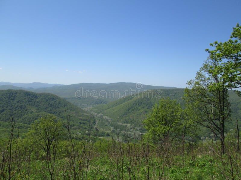 Groene turkooise heuvels onder de de zomerhemel stock foto
