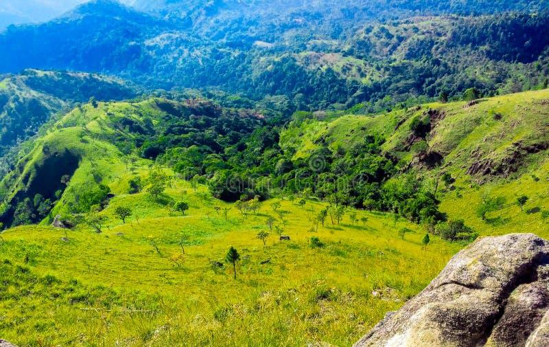 Groene vallei en blauwe heuvels stock afbeeldingen