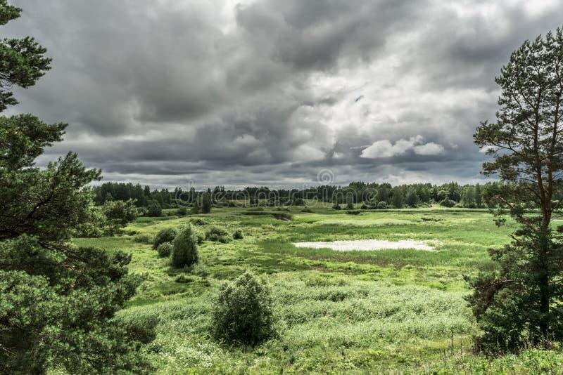 Groene vallei met een natuurlijke vijver, struiken en bomen, regenhemel, de zomer saaie winderige dag stock afbeelding