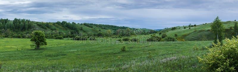 Groene vallei met een ravijn royalty-vrije stock foto's