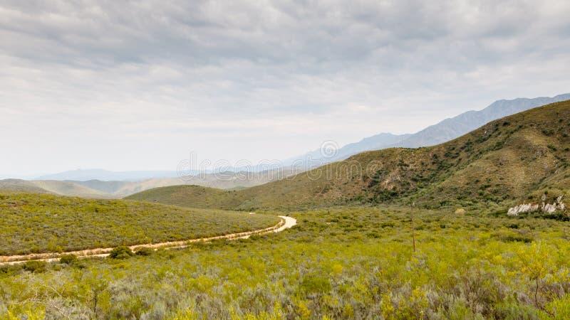 Groene vallei met weg die door de bergen leiden stock fotografie