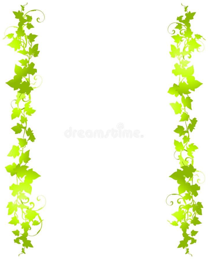 Groene van het Blad van de Wijnstok Grenzen Als achtergrond vector illustratie
