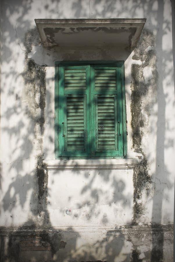 groene venster en boomschaduw stock fotografie