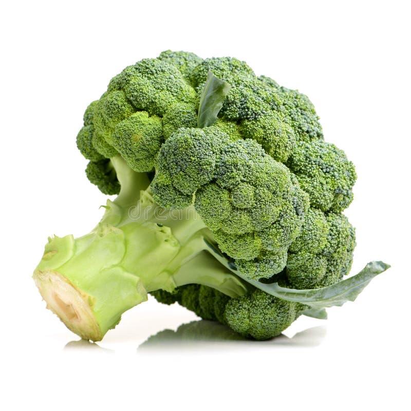 Groene verse broccoli stock fotografie
