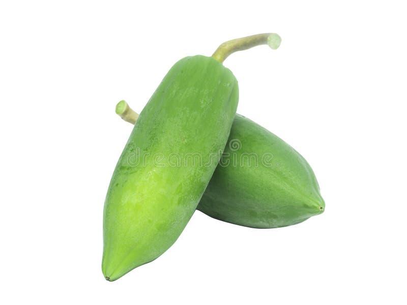 Groene verse papaja geïsoleerd op witte achtergrond royalty-vrije stock afbeeldingen