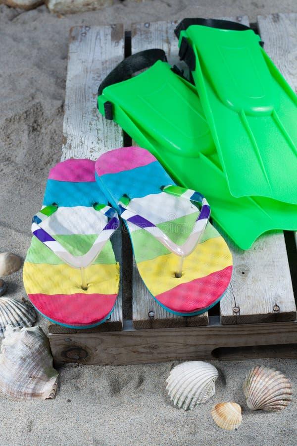 Groene vinnen en ploffen op het zandige strand stock foto