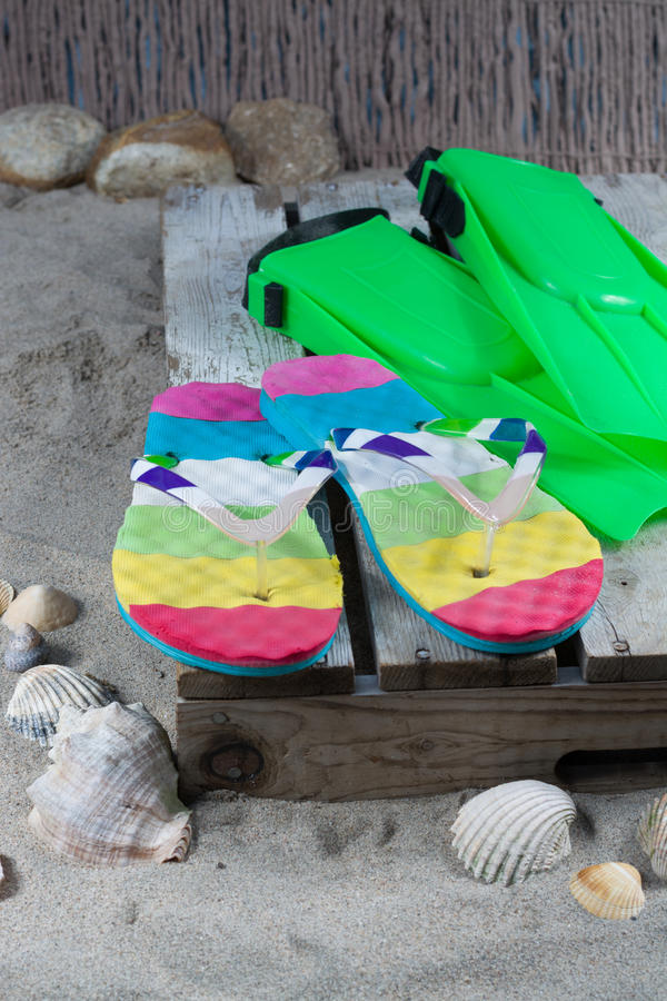 Groene vinnen en ploffen op het zandige strand royalty-vrije stock afbeeldingen