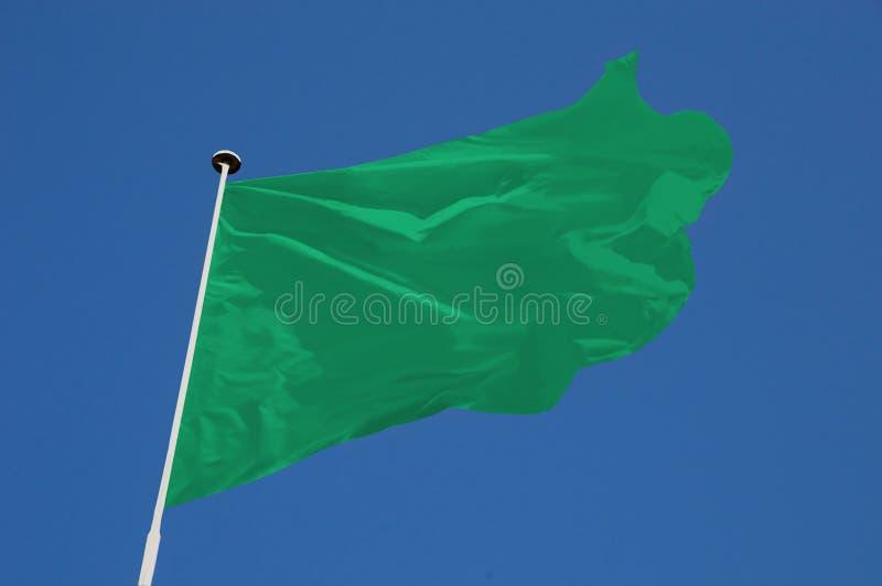 Groene vlag royalty-vrije stock afbeeldingen