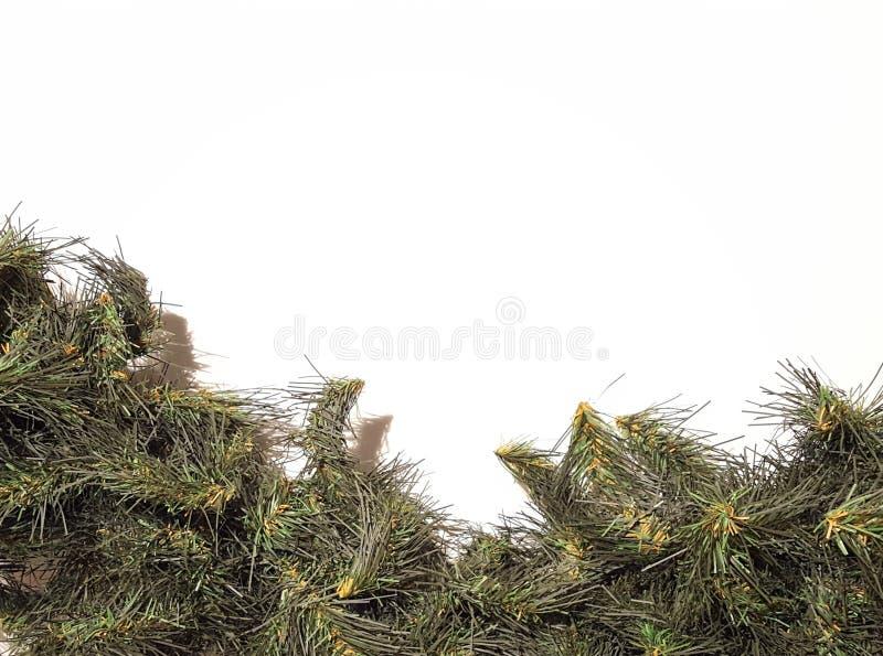 Groene Vrolijke Kerstmis Garland Decoration royalty-vrije stock fotografie
