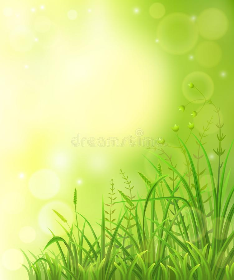 Groene weideachtergrond stock foto's