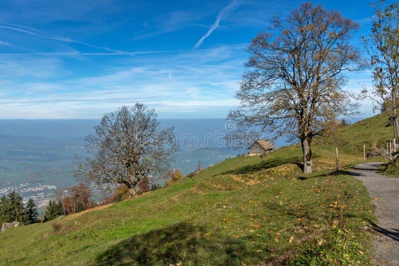 Groene weiden boven Meer Luzerne, dichtbij onderstel Rigi, Alpen, Zwitserland stock afbeeldingen