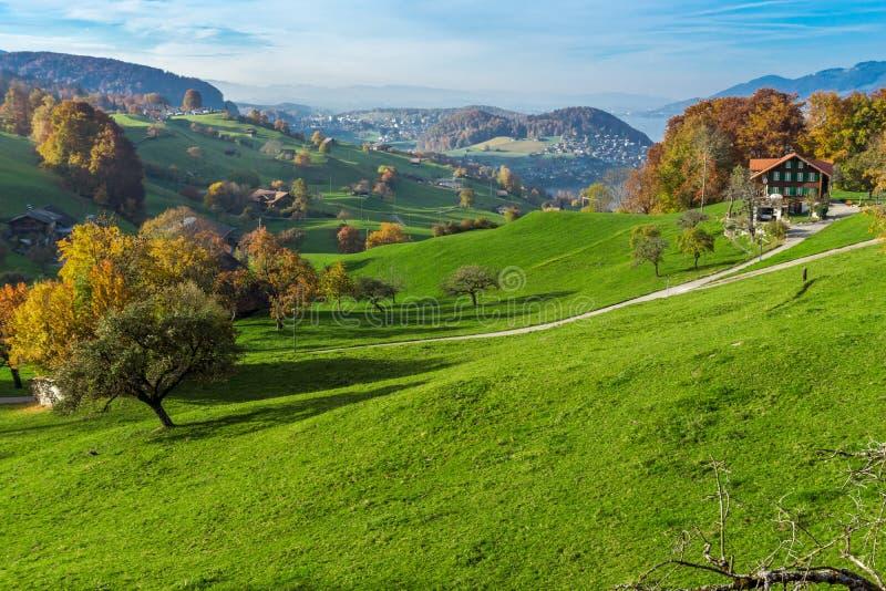Groene weiden en het typische dorp van Zwitserland dichtbij stad van Interlaken stock fotografie